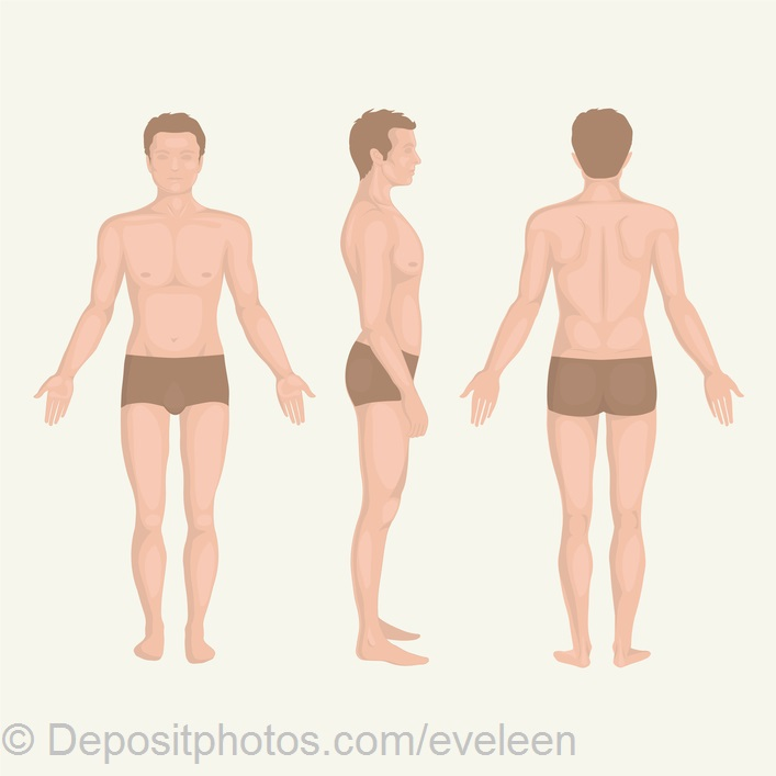 man body anatomy, front, back and side standing vactor human pose  — Grafika wektorowa